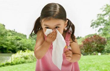 thuốc chữa viêm mũi dị ứng tốt nhất