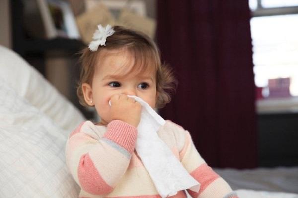 thuốc chữa viêm mũi dị ứng tốt nhất bằng đông y